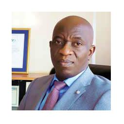 Mr. Oluwatoyin Sanyaolu, Director